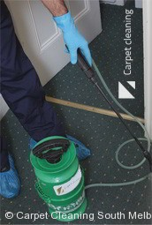 Professional Carpet Cleaners South Melbourne 3205
